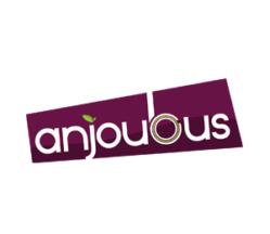 anjoubus-transport-maine-et-loire